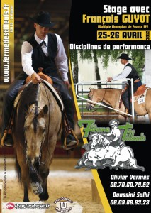 affiche stage fguyot 2015